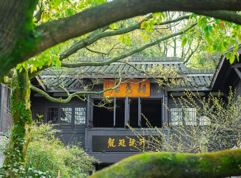 10 Best Museums in Hangzhou China