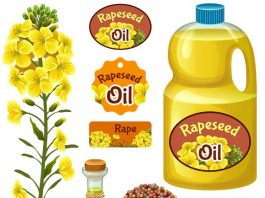 China's Foundational Rapeseed Oil