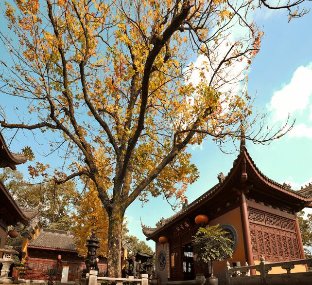 History of Lingyin Temple