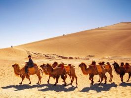 What Is The Silk Road?